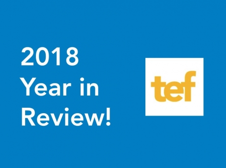 18 Things you probably didn't know TEF did in 2018
